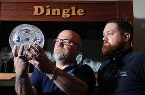 DIngle Crystal Newsletter
